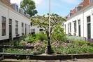 Sint Jacobs- of Crayenboschhofje  4