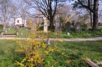 Begraafplaats - Groenesteeg  07